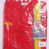 2012-13 Wales Home Shirt *BNIB* L.Boys